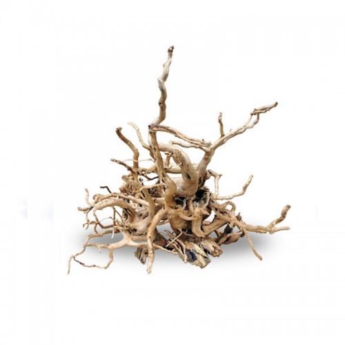 Red moor branch 30-40cm