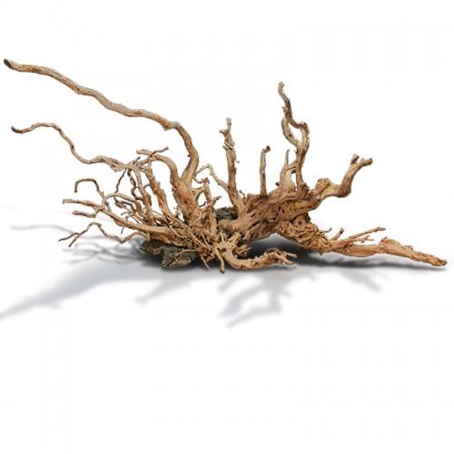 Red moor branch 40-50cm