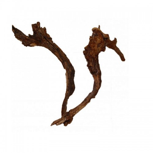 Hornwood 60-100cm