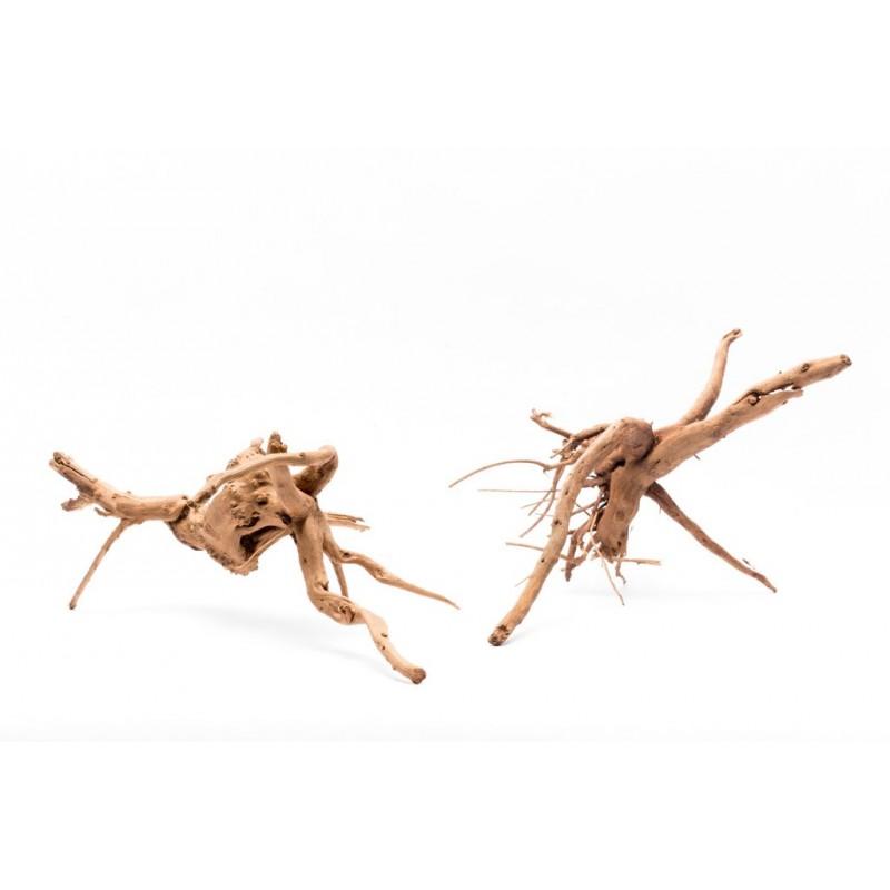 Spider Wood S/M