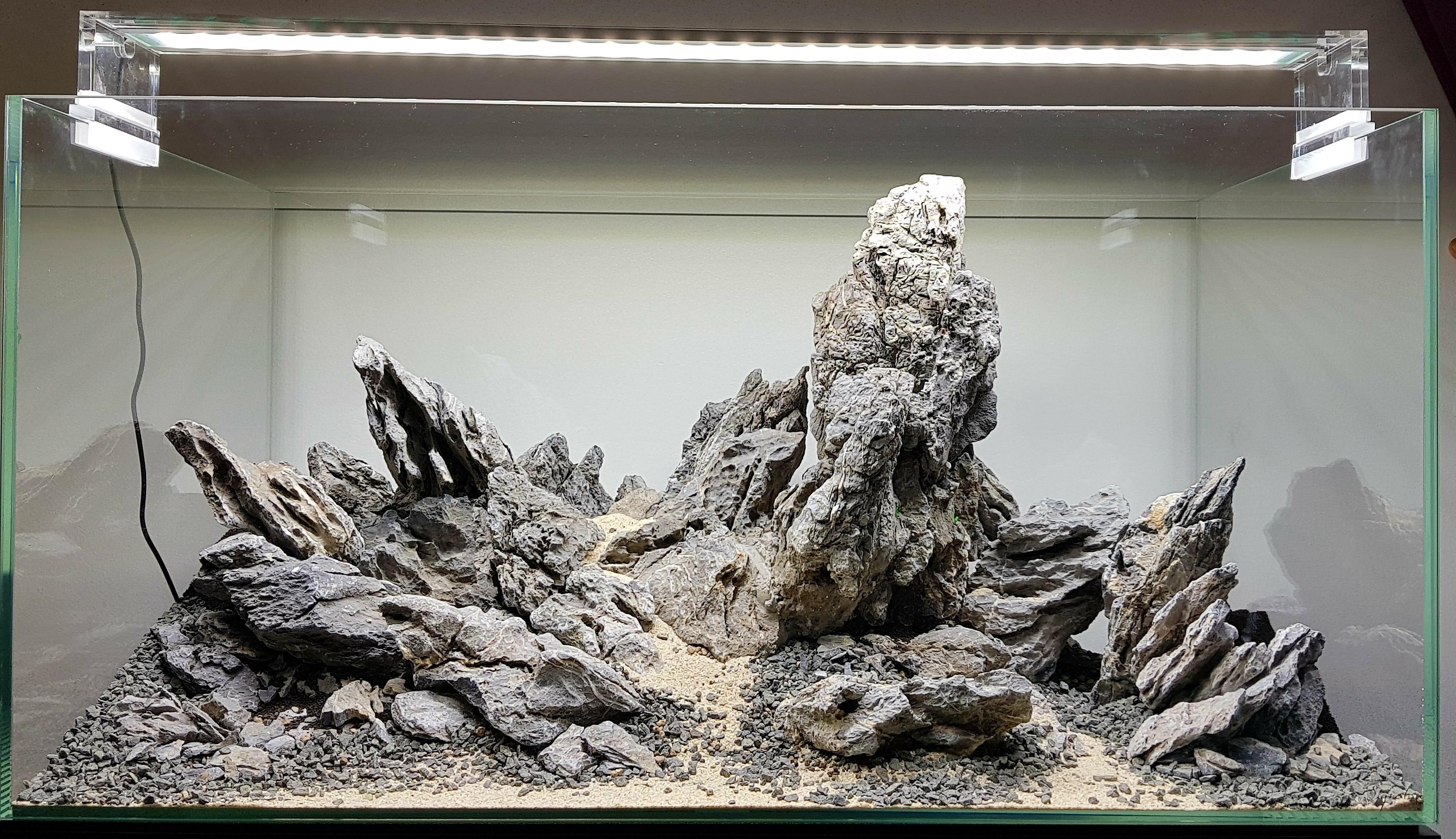 Iwagumi with Seiryu stone.